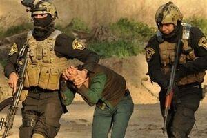 عراق از دستگیری یک سرکرده مهم داعش خبر داد