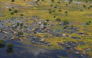 روستایی در محاصره آب
