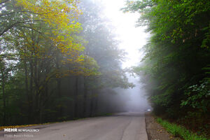 عکس/ تکهای از بهشت طبیعت