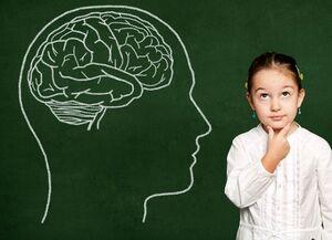 رشد مغز کودک نمایه کودکان نمایه
