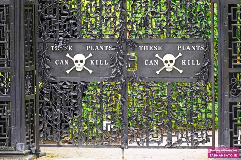 خطرناکترین باغ گیاهان جهان با چندین کشته در یک سال +عکس