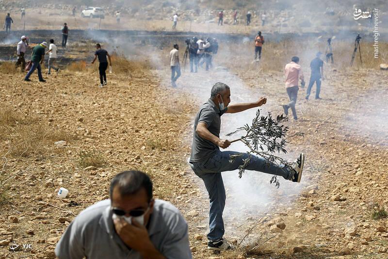 تظاهرکنندگان فلسطینی در جریان اعتراض به شهرک سازی های اشغالگران صهیونیست