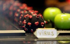 عکس/ شیرینی به شکل ویروس کرونا