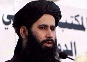 اعلام حمایت طالبان از ریاستجمهوری دوباره ترامپ