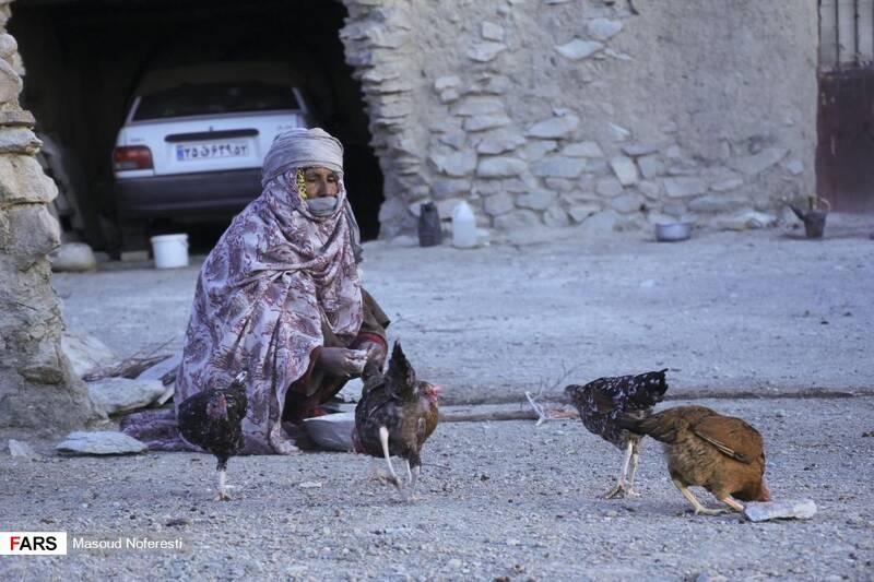 اهالی روستا با وجود نبود امکانات مناسب به پرورش دام و طیور اشتغال داشتند.