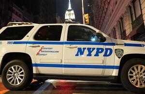 فیلم/ اعزام پلیس نیویورک به واشنگتن!
