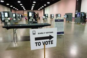 شهروندان ایالت جورجیا پای صندوق رای
