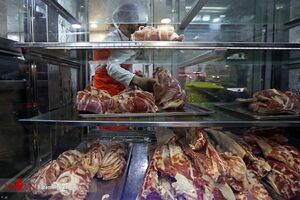 علت اصلی گرانی گوشت در بازار