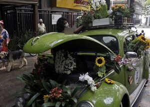 عکس/ تبدیل خودروی قدیمی به گل فروشی