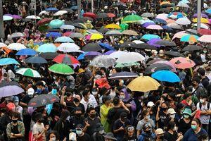 مهر سکوت رسانههای جهان در برابر شلوغیهای تایلند +فیلم