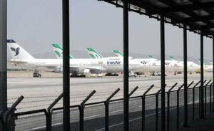 ماجرای رهاسازی دام های زنده در فرودگاه امام چه بود؟