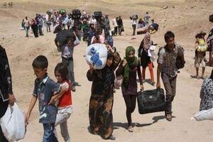 برنامه های کمک رسانی سازمان ملل در یمن متوقف می شود