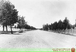 عکس/ خیابان ولیعصر در تهران قدیم