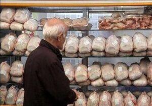 قیمت گوشت مرغ نمایه