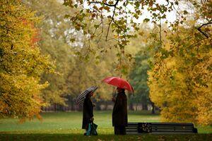 عکس/ رنگهای تماشایی پاییز در سراسر جهان