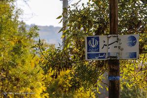 عکس/ تهران به رنگ پاییز