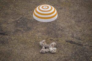 عکس/ بازگشت فضانوردان به زمین