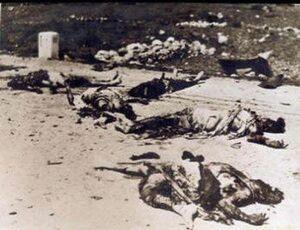 بازخوانی جنایت جنگی صهیونیستها در روستای الدوایمه