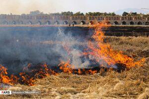 عکس/ آتش به جان زاینده رود افتاد