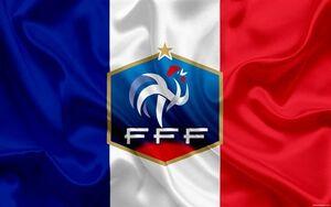 کرونا بخشی از فوتبال فرانسه را تعطیل کرد