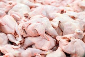 نرخ هر کیلو مرغ چند تومان شد؟