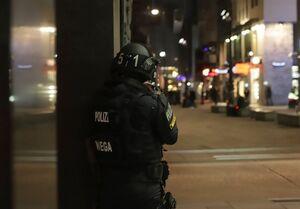 واکنشهای توام با وحشت مقامات اروپایی به حمله وین