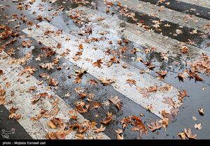 عکس/ بارش باران پاییزی در ارومیه