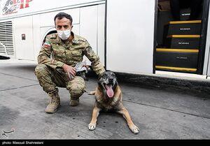 عملیات سگهای پلیس در ترمینال غرب