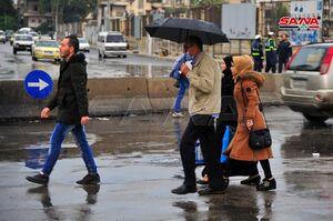 عکس/ بارش باران پاییزی در دمشق