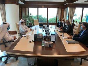 دیدار وزیر نیرو با وزیر مشاور در امور انرژی قطر