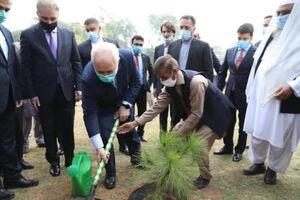 عکس/ کاشت درخت یادبود توسط ظریف