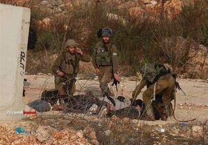 تشدید درگیری میان جوانان فلسطینی و اشغالگران در قدس و کرانه باختری