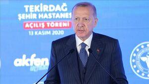 آخرش اردوغان امپراطوریش رو میسازه! +کاریکاتور