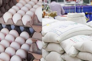 جزئیات افزایش قیمت کالاهای اساسی طی یک سال/ افزایش ۹۰ درصدی نرخ برنج خارجی + سند