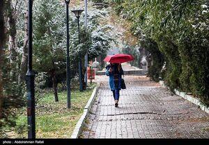 آغاز بارش برف و باران ۵ روزه در کشور
