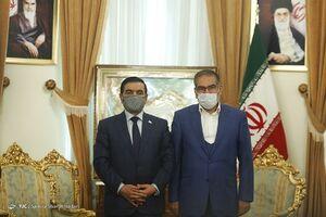 عکس/ دیدار وزیر دفاع عراق با علی شمخانی