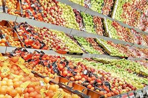 میوه و تره بار نمایه بازار میوه نمایه