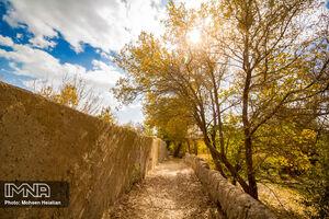 تصاویری از درکه پاییزی