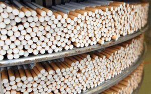 فیلم/ بهشت قاچاقچیان سیگار