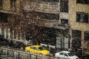 فیلم/ بارش برف پاییزی در تهران