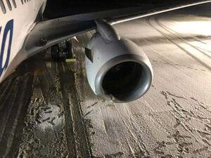 عکس/ تصادف یک بوئینگ ۷۳۷ با یک خرس