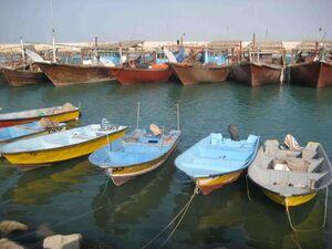 فیلم/ اسکلههای بوشهر مملو از  بمبهای ساعتی!