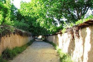 حاشیههای پرونده یک باغ ۴ هزار متری در خیابان آفریقای تهران