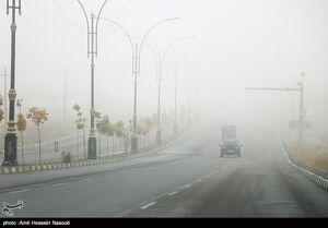 عکس/ زنجان در مه