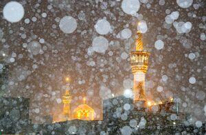 فیلم/ بارش برف صبحگاهی در حرم امام رضا(ع)