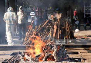 فیلم/ سوزاندن اجساد بیماران کرونایی در هند