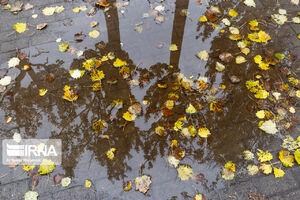 عکس/ پاییز در پارک شاه گولی تبریز