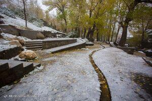 بارش نخستین برف پاییزی در همدان