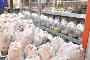 توزیع مرغ دولتی تا رسیدن بازار به قیمت مصوب ادامه دارد