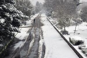 منظره زیبای برفی در بلوار طاق بستان کرمانشاه+عکس